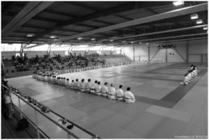 Stage de judo Gévrise Emane